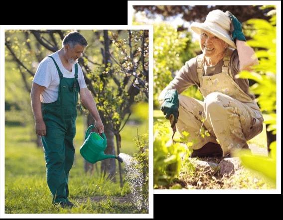 Gardener About Us